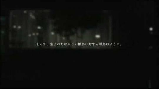 スクリーンショット(2010-01-23 1-23 13.56.03)